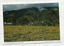 SPAIN - AK 219442 Insellandschaft Auf La Palma - La Palma