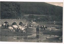 27470 ( 1 Scans ) Bresse Pont St Lambert - Vresse-sur-Semois