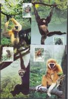 China P.R. 2002 Monkeys 4v 4 Maxicards (19370) - 1949 - ... People's Republic