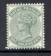 NATAL, 1882 ½d Superb MM - Natal (1857-1909)