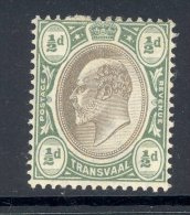 TRANSVAAL, 1904 ½d (wmk Mult. Crown CA) Very Fine MM, Cat £11 - Zuid-Afrika (...-1961)