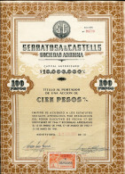 """URUGUAY ACCIONES SHAREHOLDING TITRES """"SERRATOSA & CASTELLS S.A"""" N° 98731 YEAR 1964 100 PESOS STAMP TIMBRE TBE GECKO - Industrie"""