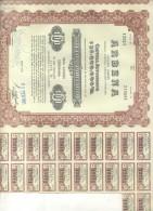 ARBENA SOCIEDAD ANONIMA UNA ACCION ORDINARIA DE 100 PESOS AÑO 1961 BUENOS AIRES REPUBLICA ARGENTINA TITRE SHAREHOLDING - Shareholdings