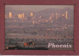 Phoenix - Nighttime Falls On Phoenix - Phoenix