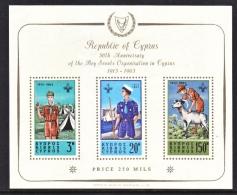 CYPRUS  REPUBLIC  226 A  **  BOY SCOUTS - Cyprus (Republic)