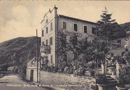3-4065- Vidiciatico - Albergo Appennino - Bologna - F.g. Viaggiata 1951 - Bologna