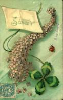 N°122 FFF 195  SOUVENIR BRANCHE  DE LILAS CARTE EN RELIEF GAUFREE SBB 702 - Fleurs, Plantes & Arbres