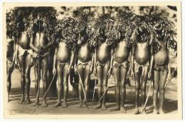 C. Zagourski - L´AFRIQUE QUI DISPARAIT ! Nº 126 - Fête De Circonscision. Original Old Real Photo Postcard. - Africa