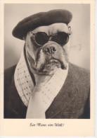 EIN  MANN  VON  WELT                  (NUOVA) - Honden