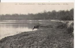 FORET DE RAMBOUILLET 216 CHASSE ROYALE LE CERF SORTANT DE L'EAU  1919 - Jacht