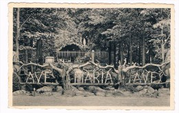 B5421    MEERSELDREEF : Genadendal - De Grot - Hoogstraten