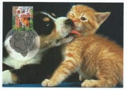 Australia 1996 :cat And Dog ; Cane Lecca  Gattino . Maximum Card E F.D.C. - Domestic Cats