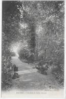 PROVINS - Une Allée Du Jardin Garnier - Provins