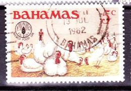 Bahamas, 1981, SG 598, Used - Bahamas (1973-...)
