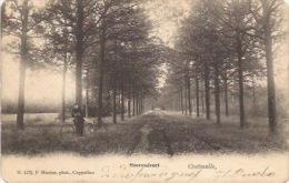 Oostmalle: Heerendreef - Malle