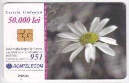 Romania   , Phonecards   , 2001 ,    Used - Romania