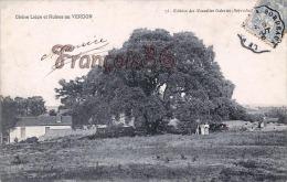 (33) Le Verdon - Chêne Liège Et Ruines - Bon état - 2 SCANS - Otros Municipios