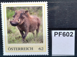 Pf602 Warzenschwein, Phacochoerus Africanus, Warthog, Phacochère, AT 2015 ** - Private Stamps