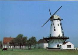 KANEGEM Bij Tielt (W.Vl.) - Molen/moulin - De Mevrouwmolen Vóór De Restauratie, Met Kale Roeden. PRACHTKAART !!! - Tielt