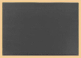 50x KOBRA-Einsteckkarte, Kunststoff Nr. K11 - Classificatori