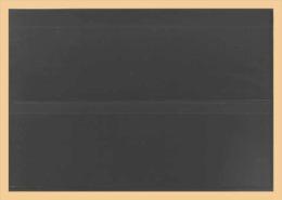 50x KOBRA-Einsteckkarte, Kunststoff Nr. K12 - Classificatori