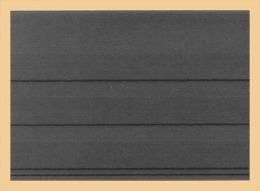 100x KOBRA-Versand-Einsteckkarten 156 X 112 Mm Mit Deckblatt Nr. - Albums à Bandes
