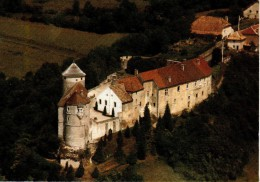 Château De BELVOIR (XIIe XIIIe S.) - Vue Aérienne - France