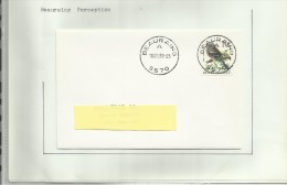 Oblitérations Postal  Beauraing  Winenne  Felenne - Zonder Classificatie