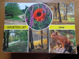 Groeten Uit Genk  ----> Beschreven 1987 - Genk