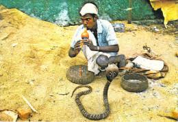 Asie > SRI LANKA  Cobra Dance  (charmeur De Serpent) ( Editions :Salmal Photo Amarasinghe P 180) *PRIX FIXE - Sri Lanka (Ceylon)