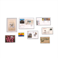 SAFE 9284 50 Klarsichthüllen Offene Schmalseite 230x120 - Telefonkarten