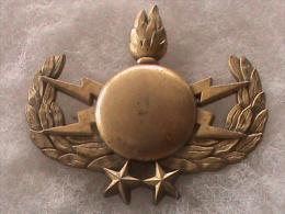 INSIGNE MILITAIRE                FRAISSE - Army
