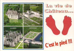 41 -  Carte à Trou, CHATEAUX DE LA LOIRE (Azay Le Rideau, Chambord, Chenonceau, Villandry) - Non Classificati