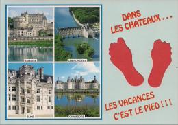 41 -  Carte à Trou, CHATEAUX DE LA LOIRE (Amboise, Blois, Chambord, Chenonceau) - Non Classificati