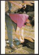 CPM - QUISTINIC - Yvon Kervinio - Castration D'un Bouc - 1989 - Autres Communes
