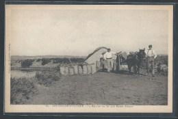- CPA 85 - Les Sables-d'Olonne, La Récolte Du Sel Aux Marais Salants - Sables D'Olonne