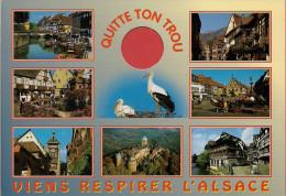 67 - 68 -  Carte à Trou, ALSACE (Riquewihr, Strasbourg, Obernai, Ribeauvillé, Colmar, Ht Koenigsbourg, Eguisheim) - Alsace