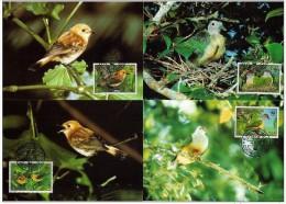 Cook Islands 1989 Yvertn° 994-97 (°) Used MK CM Cote Des Timbres 15 Euro  Faune Oiseaux Vogels Birds - Cook