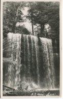 Ash Bester Photograohic Postcard, Russell Falls, National Park, Tas, AB Series 216 - Australie
