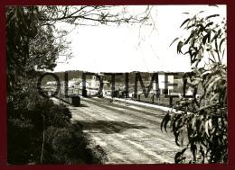 PORTUGAL - ESTAÇAO FERROVIARIA DA FUNCHEIRA - UMA VISTA - 1950 LARGE SIZE REAL PHOTO - Trains
