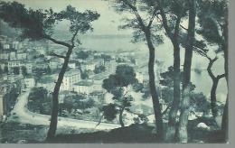 MONACO...vue Générale Prise De L'Observatoire...1923 ??..bleutée.14 X 9 - Monaco