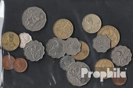 Swasiland 100 Gramm Münzkiloware - Münzen & Banknoten
