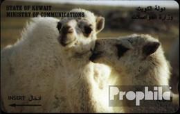 Kuwait 400 3 Einheiten Gebraucht Lamas - Kuwait