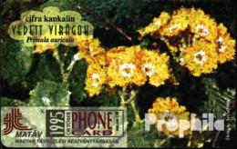 Ungarn 9501 50 Einheiten Gebraucht 1995 Primula Auricula - Hungary