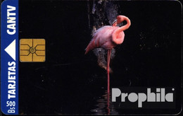 Venezuela 100 500 Einheiten Gebraucht Flamingo - Telefoonkaarten