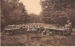 Diesterweg's Openluchtschool Te Heide - Kapellen