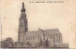 Hoogstraeten  L'église Ste Catherine Nr 33 - Hoogstraten