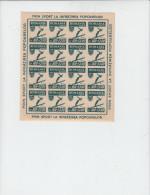 ROMANIA  1946 - Yvert 920 ND - (blocco Di 16 Esemplari) - Sport Invernali - Salto Sci - Blocchi & Foglietti