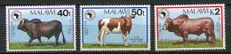 (cl 17 - P37) Malawi ** (ref. Michel Au Dos)n° 542 à 544 - 25e Ann. De La B.A.D. , Bœuf, Génisse, Taureau - - Malawi (1964-...)