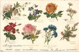 CPA DOS SIMPLE COLORISEE De 1902 - 8 Fleurs - Violette, Rose, Bruyère, Géranium...........  - VAN - - Fleurs, Plantes & Arbres